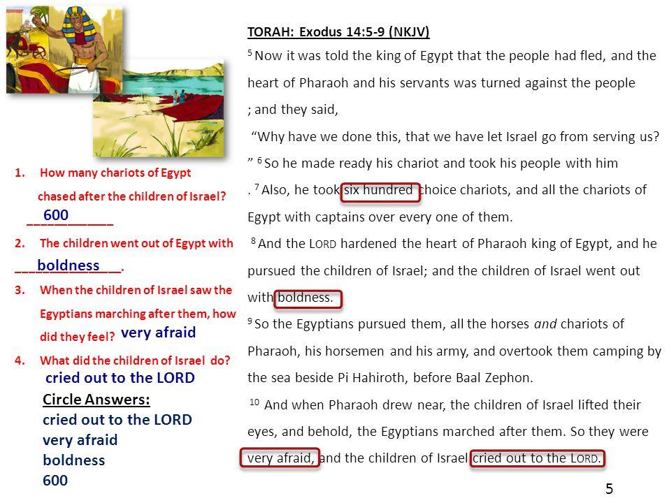TORAH: Exodus 14:13-14 Names of God Bible (NOG) 13 Moses answered the people, Don't be afraid.