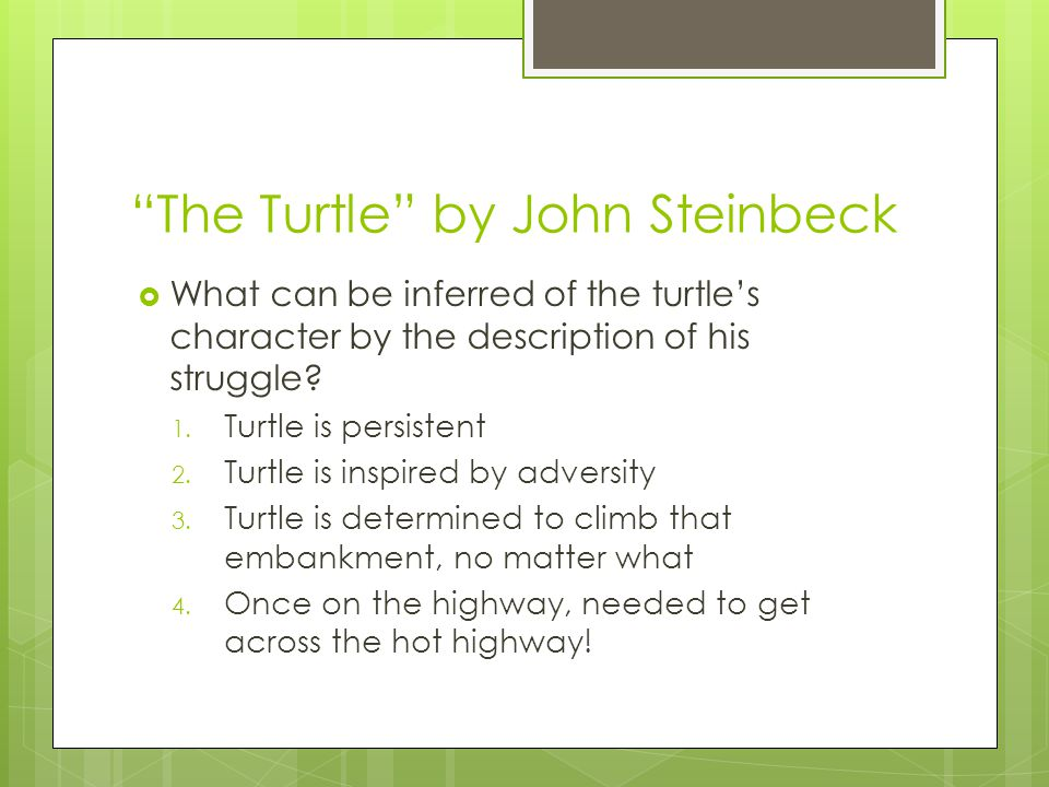 The Turtle by John Steinbeck  The turtle achieved ultimate success through persistence  The seeds that he took with him at the start of his journey have crossed the road with him and have been planted with dirt over them from his dragging and crawling  Turtle's actual obstacles: 1.