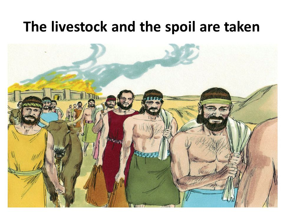 The livestock and the spoil are taken