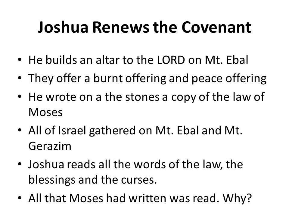 He builds an altar to the LORD on Mt. Ebal They offer a burnt offering and peace offering He wrote on a the stones a copy of the law of Moses All of I