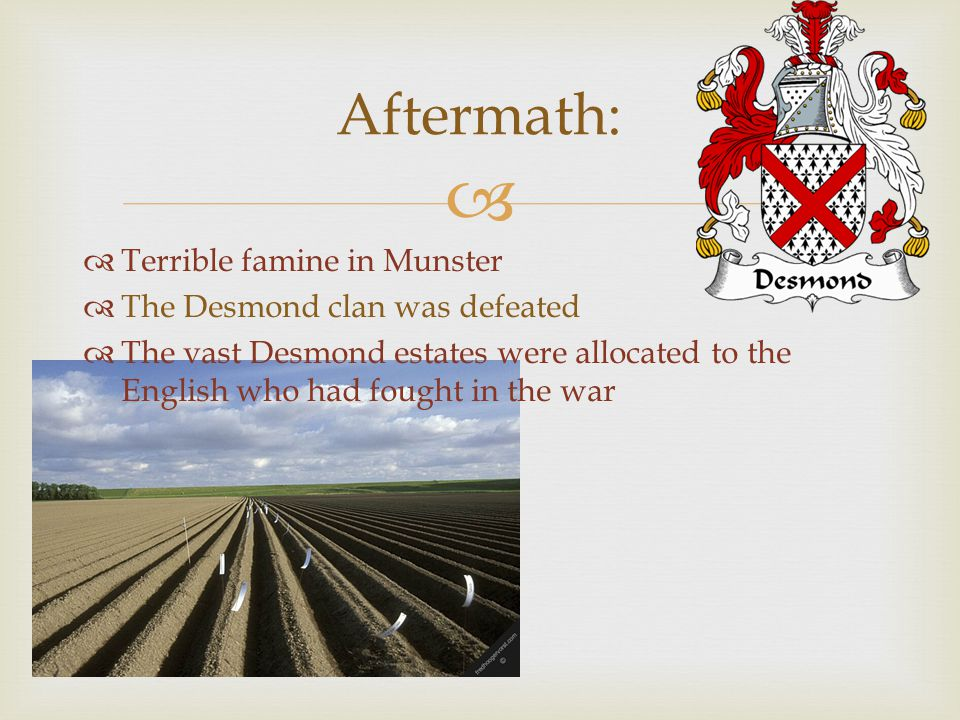   Terrible famine in Munster  The Desmond clan was defeated  The vast Desmond estates were allocated to the English who had fought in the war Afte