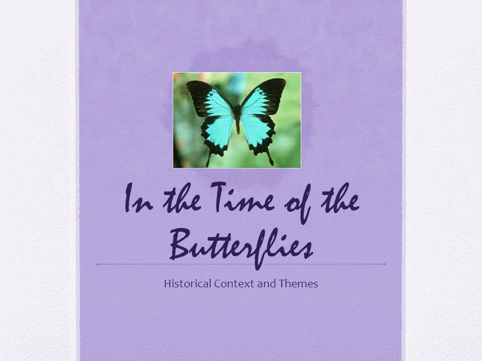 In the Time of the Butterflies Historical Context and Themes