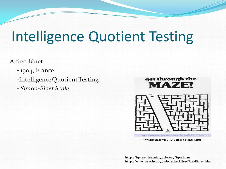 Question 3 Which is NOT one of the nine Multiple Intelligences.