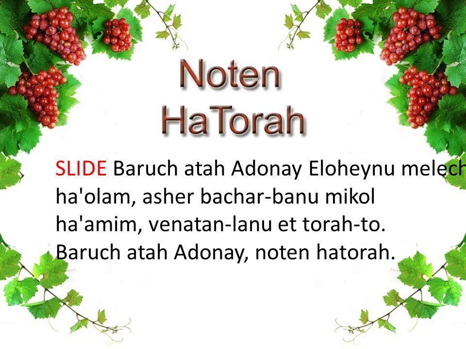 SLIDE Baruch atah Adonay Eloheynu melech ha olam, asher bachar-banu mikol ha amim, venatan-lanu et torah-to.