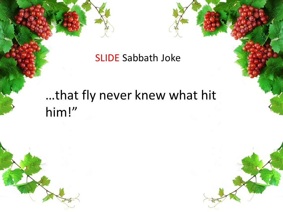 …that fly never knew what hit him! SLIDE Sabbath Joke
