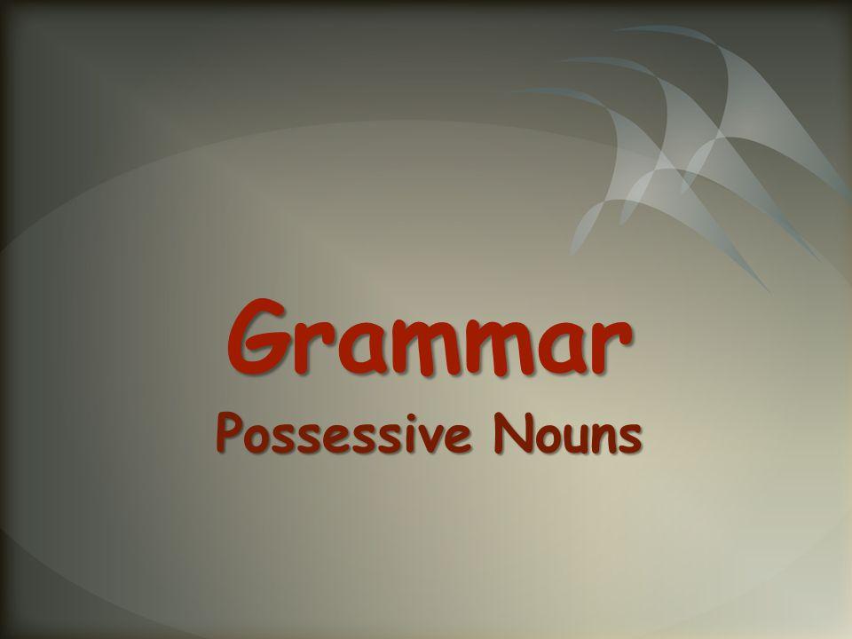 Grammar Possessive Nouns