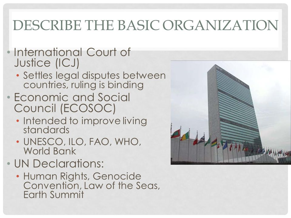 DESCRIBE THE BASIC ORGANIZATION International Court of Justice (ICJ) Settles legal disputes between countries, ruling is binding Economic and Social C