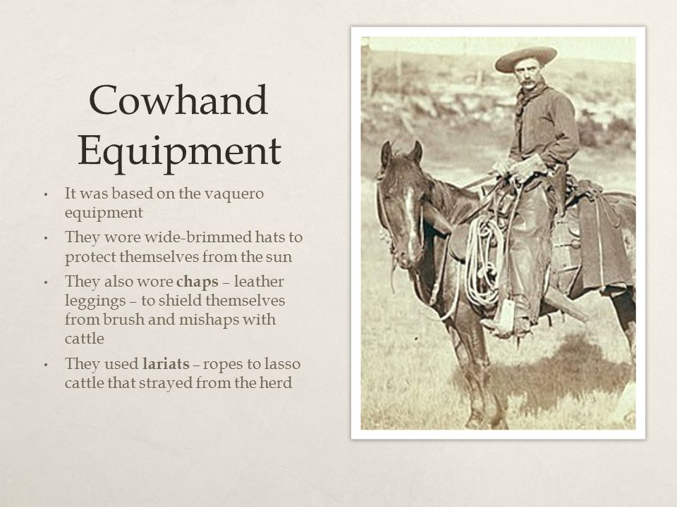 Cowhand Equipment It was based on the vaquero equipment They wore wide-brimmed hats to protect themselves from the sun They also wore chaps – leather