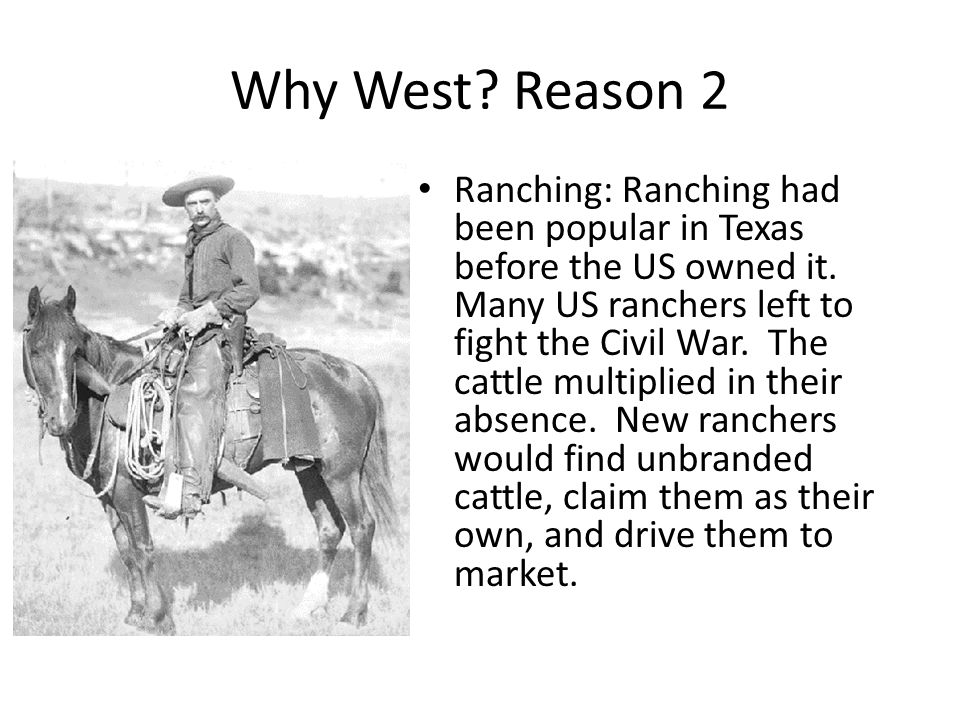 Why West? Reason 2 Ranching: Ranching had been popular in Texas before the US owned it. Many US ranchers left to fight the Civil War. The cattle multi