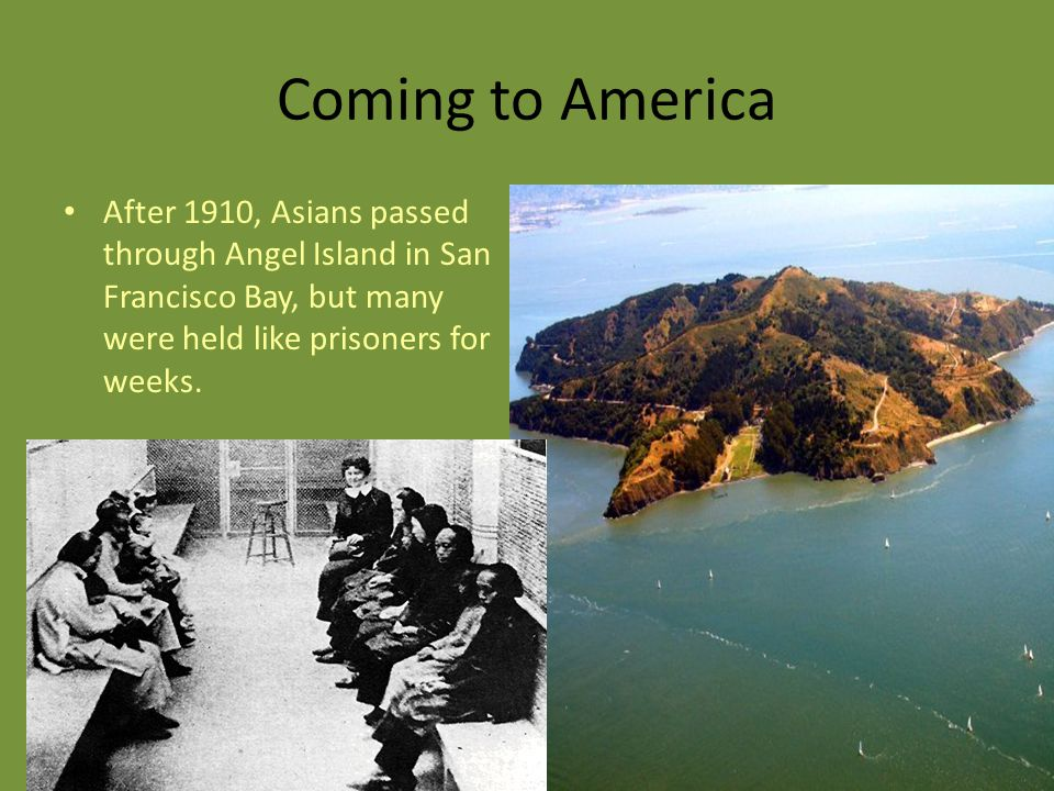 Coming to America After 1910, Asians passed through Angel Island in San Francisco Bay, but many were held like prisoners for weeks.