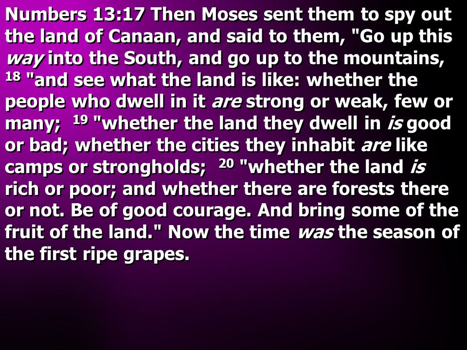 Numbers 13:17 Then Moses sent them to spy out the land of Canaan, and said to them,