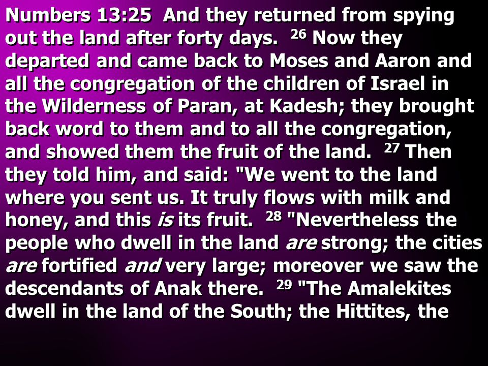 Numbers 13:25 And they returned from spying out the land after forty days. 26 Now they departed and came back to Moses and Aaron and all the congregat