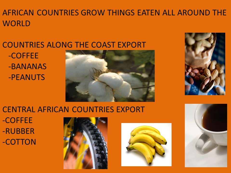 AFRICAN COUNTRIES GROW THINGS EATEN ALL AROUND THE WORLD COUNTRIES ALONG THE COAST EXPORT -COFFEE -BANANAS -PEANUTS CENTRAL AFRICAN COUNTRIES EXPORT -COFFEE -RUBBER -COTTON