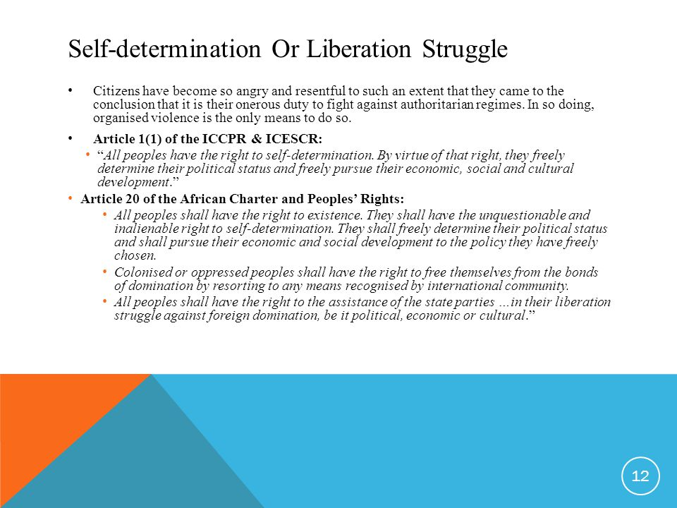 Self-determination Or Liberation Struggle Citizens have become so angry and resentful to such an extent that they came to the conclusion that it is their onerous duty to fight against authoritarian regimes.