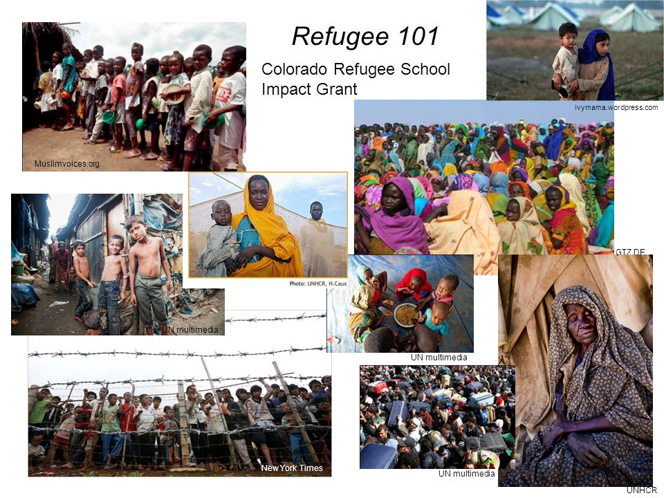Refugee 101 ivymama.wordpress.com UN multimedia New York Times Muslimvoices.org UN multimedia GTZ.DE UNHCR Colorado Refugee School Impact Grant