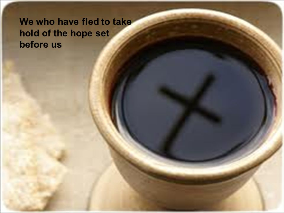 We who have fled to take hold of the hope set before us