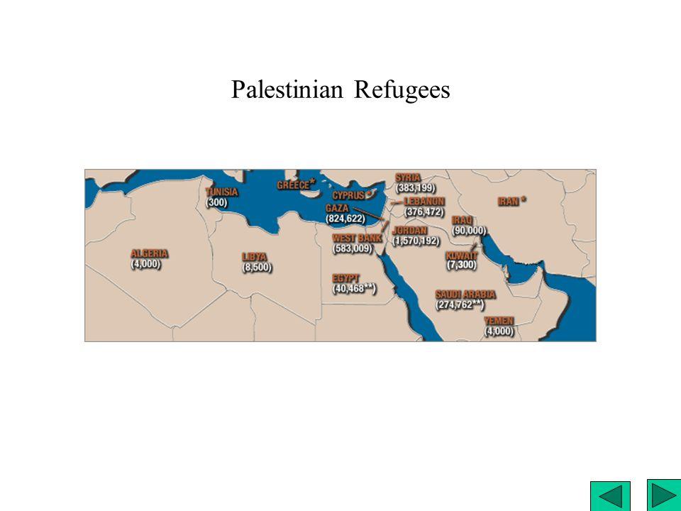 Palestinian Refugees