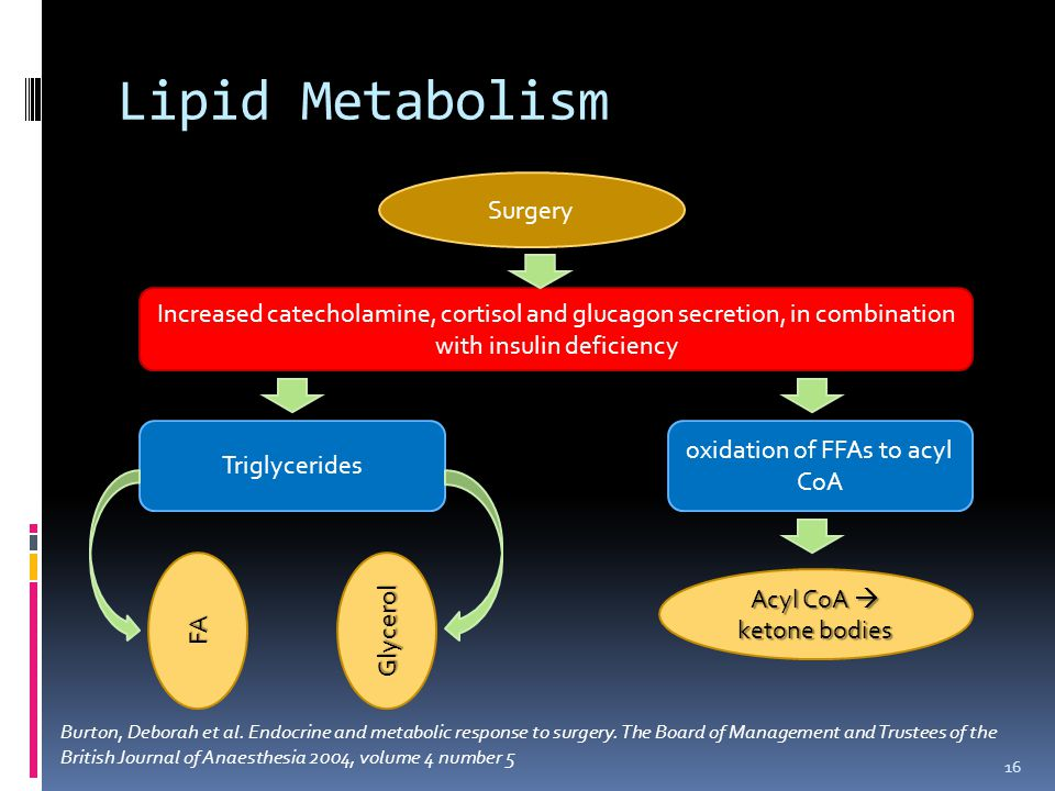 Lipid Metabolism 16 Surgery Increased catecholamine, cortisol and glucagon secretion, in combination with insulin deficiency Triglycerides oxidation of FFAs to acyl CoA FAGlycerol Acyl CoA  ketone bodies Burton, Deborah et al.