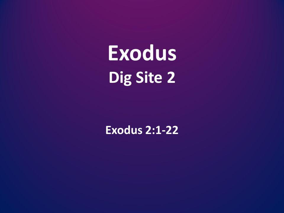 Exodus Dig Site 2 Exodus 2:1-22