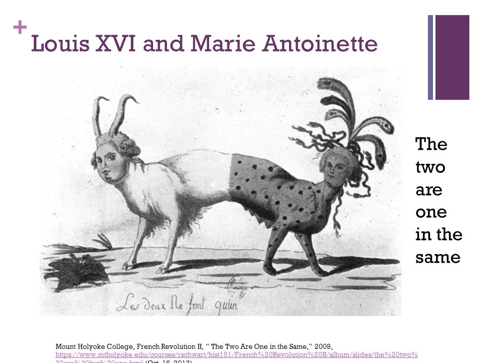 + Louis XVI and Marie Antoinette Mount Holyoke College, French Revolution II, The Two Are One in the Same, 2009, https://www.mtholyoke.edu/courses/rschwart/hist151/French%20Revolution%20II/album/slides/the%20two% 20are%20but%20one.html (Oct.