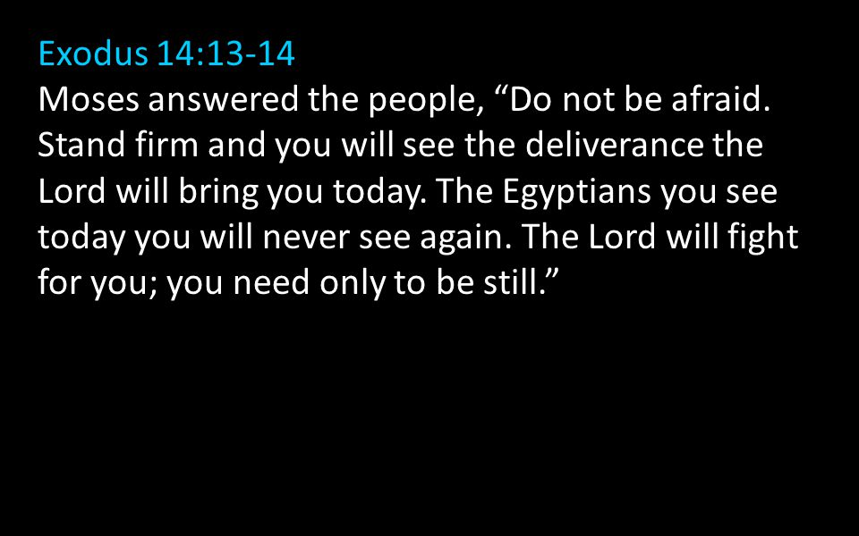 Exodus 14:13-14 Moses answered the people, Do not be afraid.