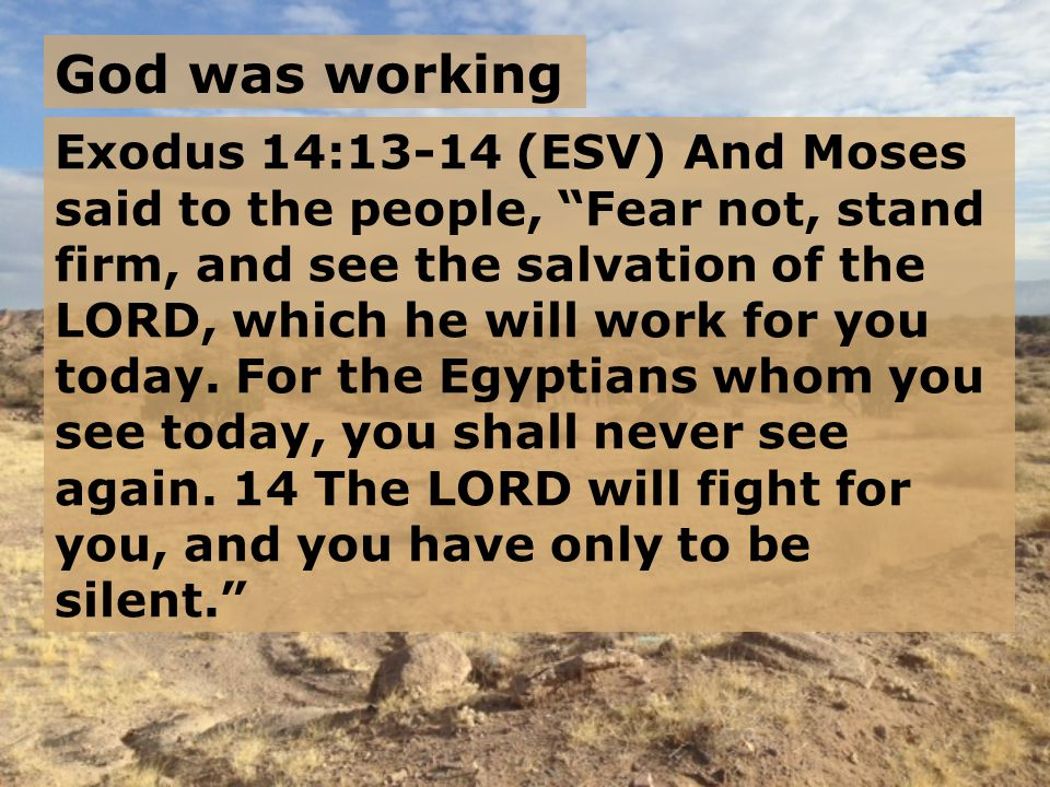 Exodus 14:13-14 (ESV) And Moses said to the people, Fear not, stand firm, and see the salvation of the LORD, which he will work for you today.