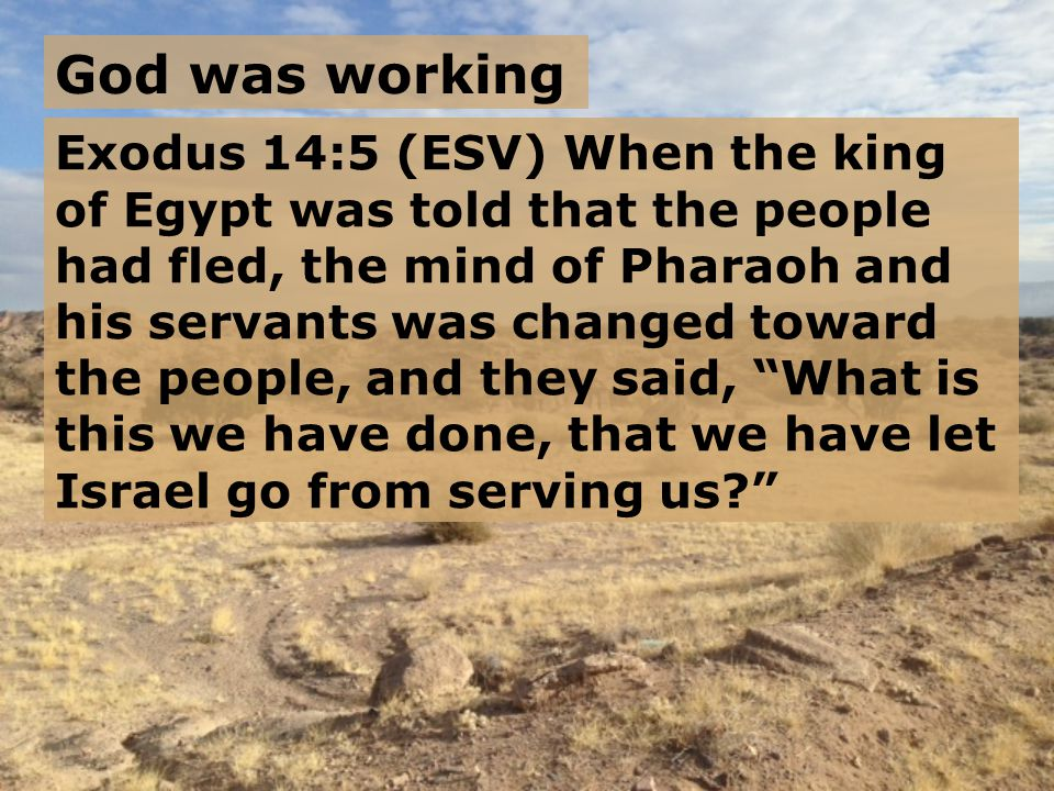 Exodus 14:6-7 (ESV) So he made ready his chariot and took his army with him, 7 and took six hundred chosen chariots and all the other chariots of Egypt with officers over all of them.