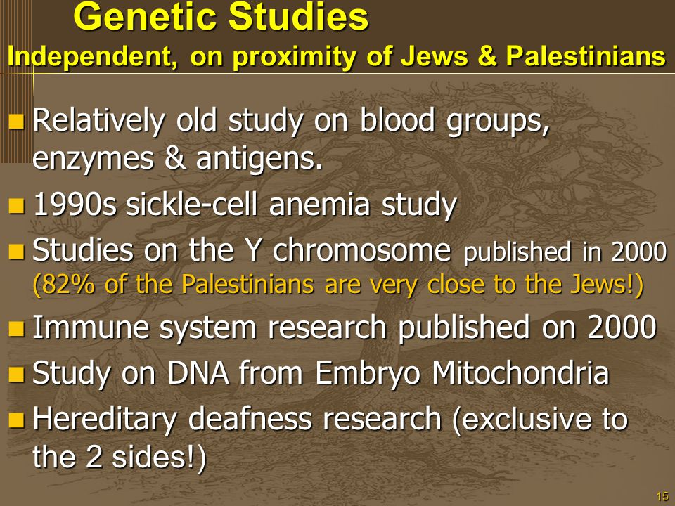 15 Genetic Studies Independent, on proximity of Jews & Palestinians Genetic Studies Independent, on proximity of Jews & Palestinians Relatively old study on blood groups, enzymes & antigens.