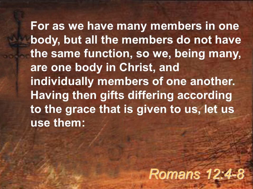 For as we have many members in one body, but all the members do not have the same function, so we, being many, are one body in Christ, and individually members of one another.