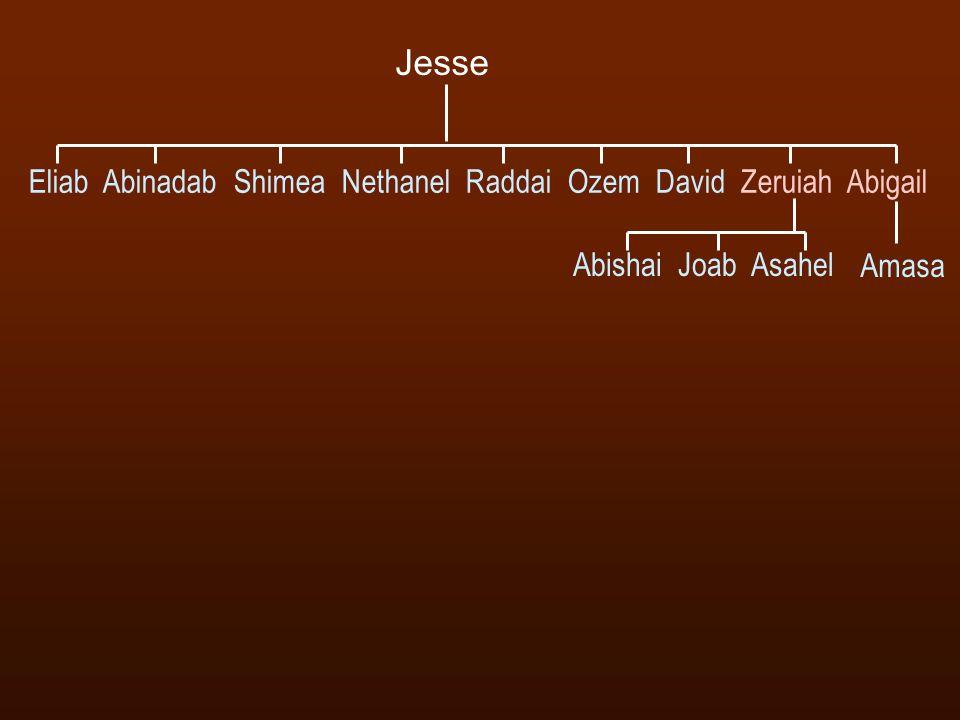 Eliab Abinadab Shimea Nethanel Raddai Ozem David Zeruiah Abigail Abishai Joab Asahel Jesse Amasa