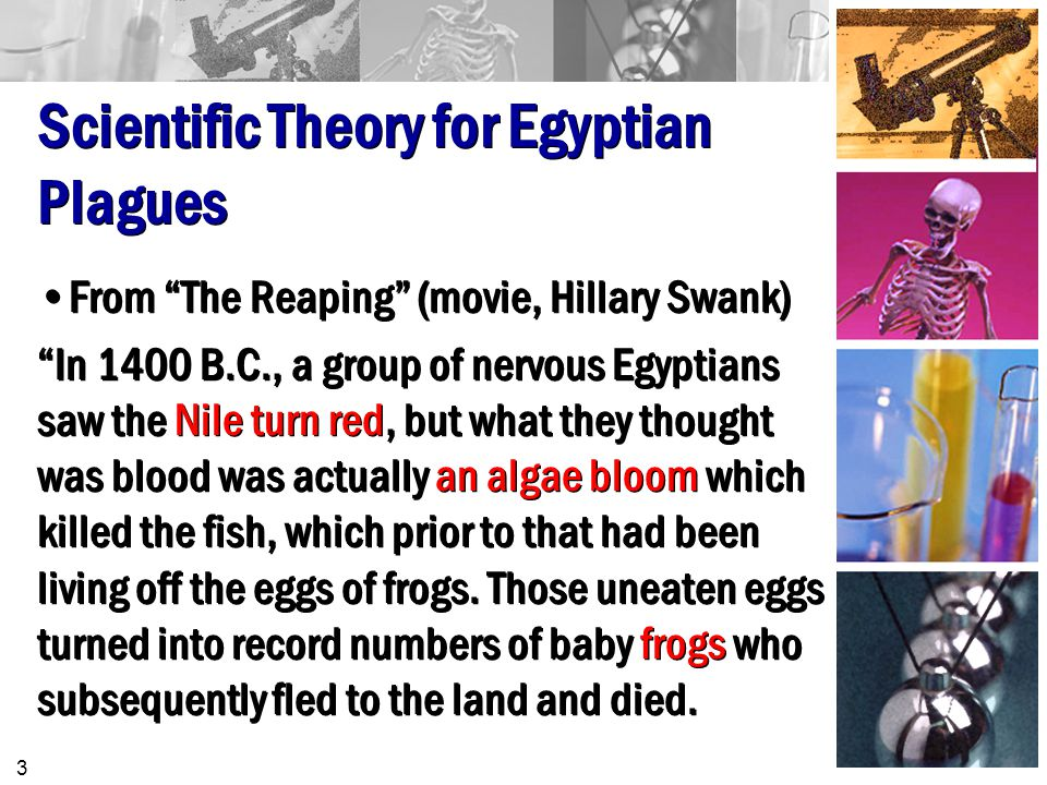 Scientific Theory for Egyptian Plagues From The Reaping (movie, Hillary Swank) In 1400 B.C., a group of nervous Egyptians saw the Nile turn red, but what they thought was blood was actually an algae bloom which killed the fish, which prior to that had been living off the eggs of frogs.