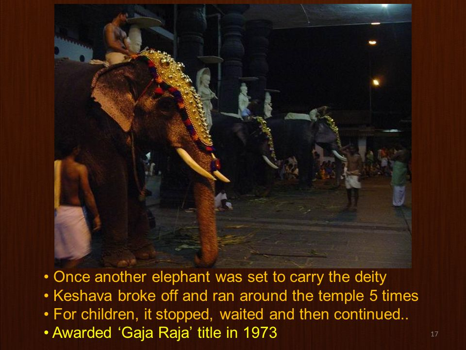 17 Once another elephant was set to carry the deity Keshava broke off and ran around the temple 5 times For children, it stopped, waited and then continued..
