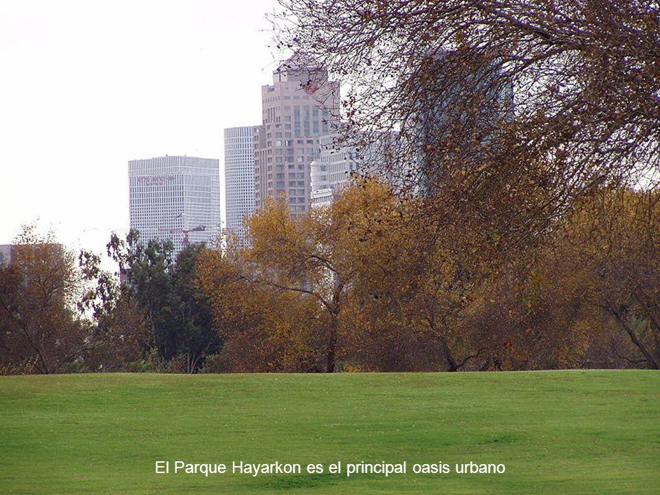 El Parque Hayarkon es el principal oasis urbano