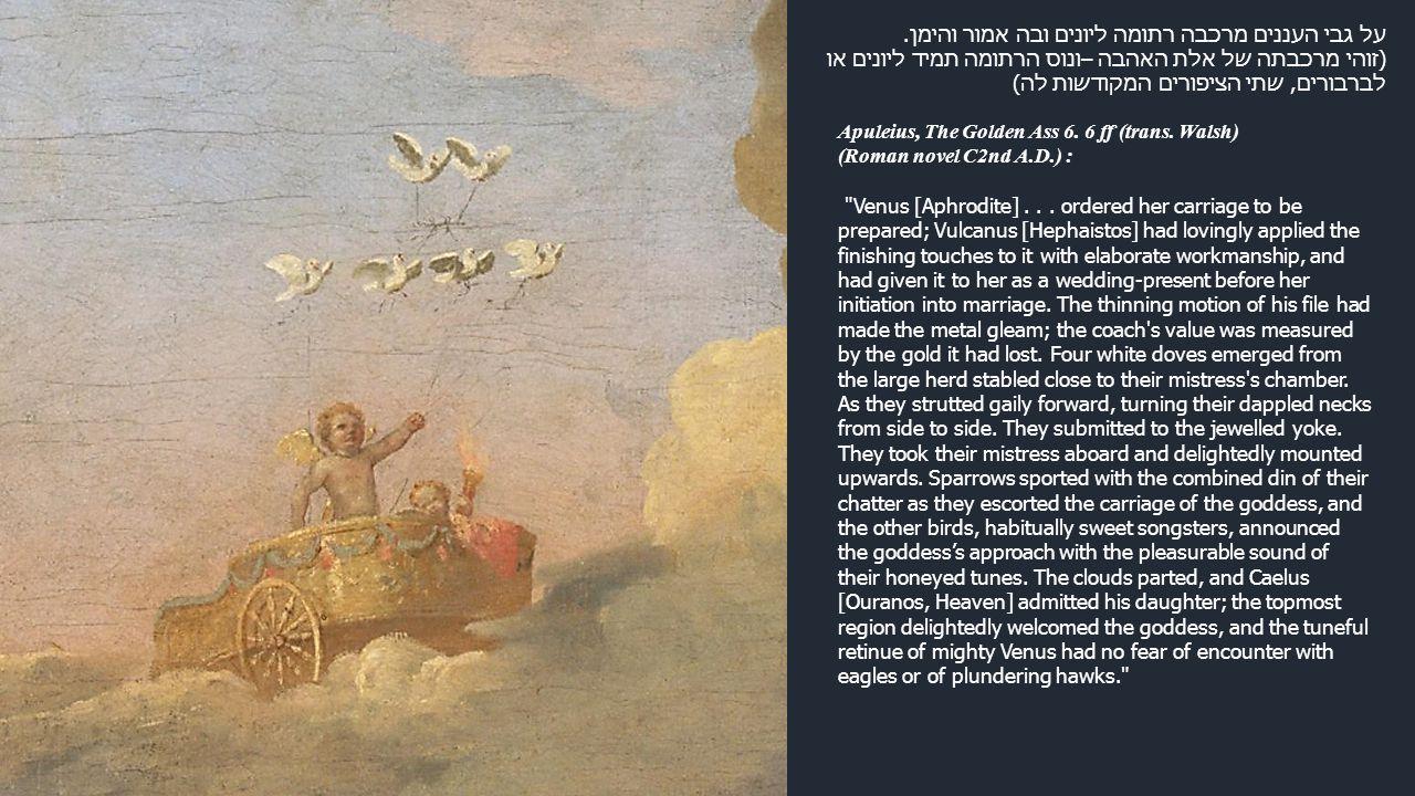על גבי העננים מרכבה רתומה ליונים ובה אמור והימן. (זוהי מרכבתה של אלת האהבה –ונוס הרתומה תמיד ליונים או לברבורים, שתי הציפורים המקודשות לה) Apuleius, T