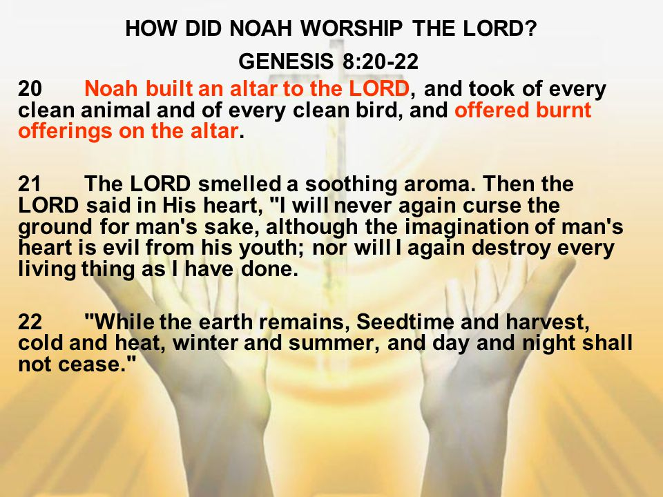 HOW DID NOAH WORSHIP THE LORD? GENESIS 8:20-22 20Noah built an altar to the LORD, and took of every clean animal and of every clean bird, and offered