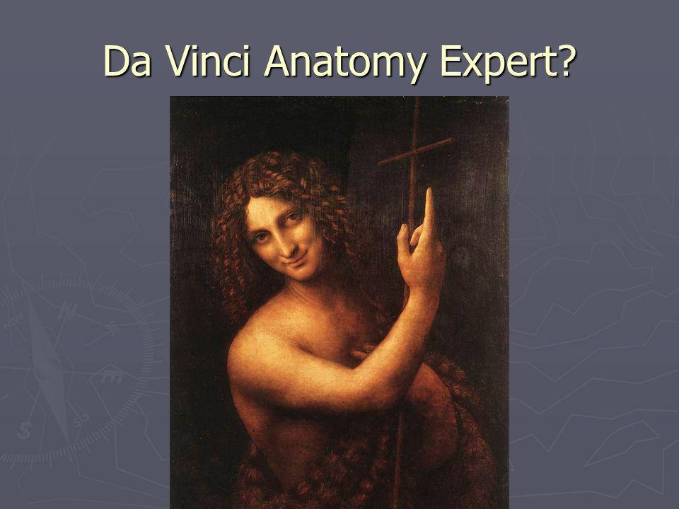 Da Vinci Anatomy Expert