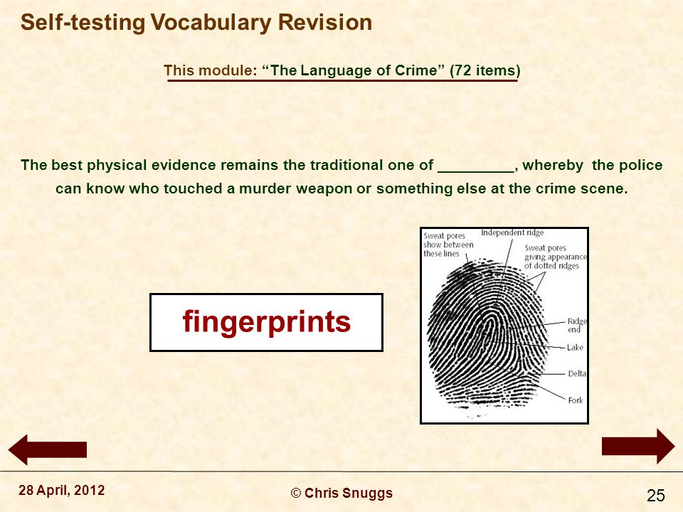 This module: The Language of Crime (72 items) © Chris Snuggs 28 April, 2012 Self-testing Vocabulary Revision 25 The best physical evidence remains the traditional one of _________, whereby the police can know who touched a murder weapon or something else at the crime scene.