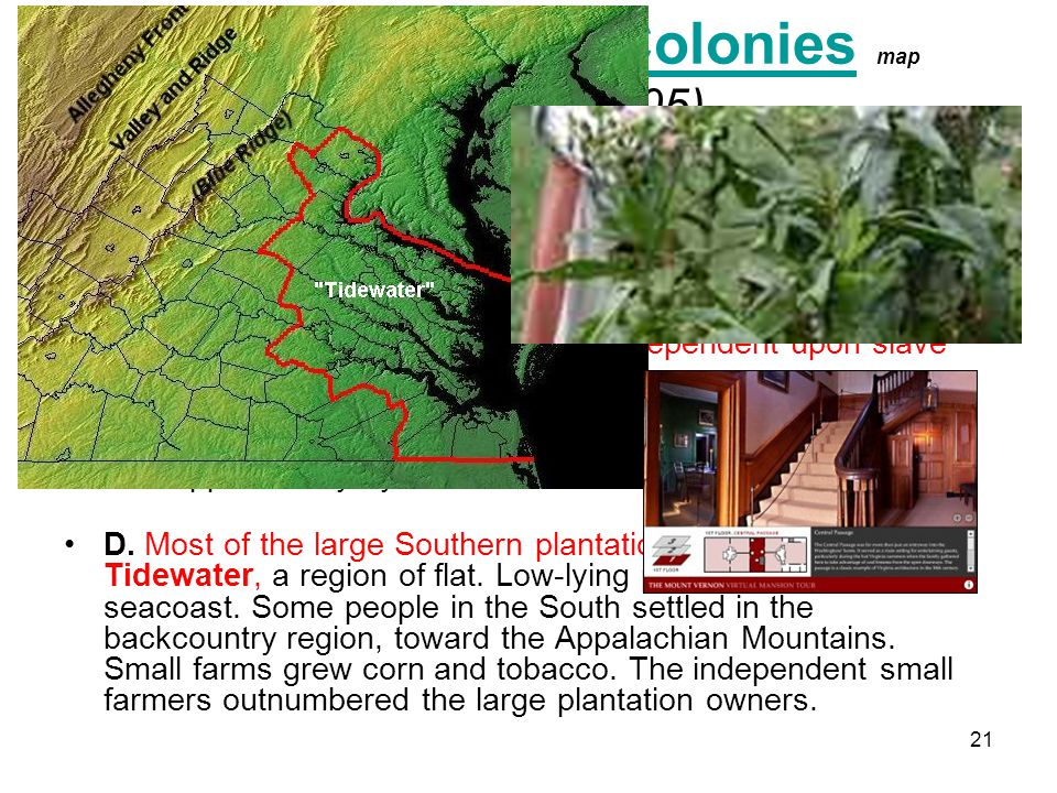 21 III. The Southern Colonies map (Pages 104-105)Southern Colonies The economies of the Southern Colonies were dependent upon tobacco in Maryland and