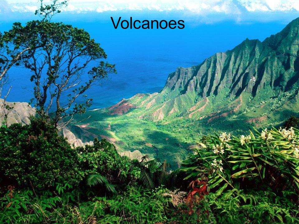 Silversword, Haleakala Volcano, Maui
