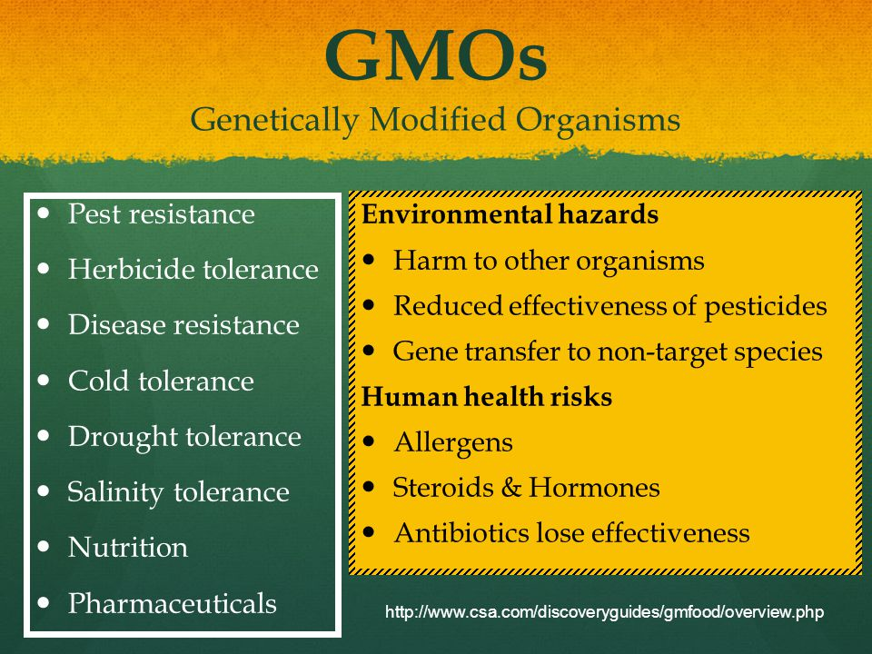 GMOs Genetically Modified Organisms Pest resistance Herbicide tolerance Disease resistance Cold tolerance Drought tolerance Salinity tolerance Nutrition Pharmaceuticals Environmental hazards Harm to other organisms Reduced effectiveness of pesticides Gene transfer to non-target species Human health risks Allergens Steroids & Hormones Antibiotics lose effectiveness http://www.csa.com/discoveryguides/gmfood/overview.php
