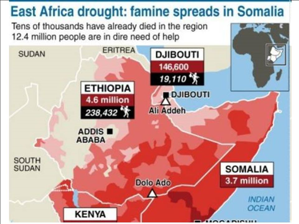 Due to global warming, there are projections that in the near future, there could be a massive die-off of crops due to a warmer or more aggressive climate and increasing droughts.