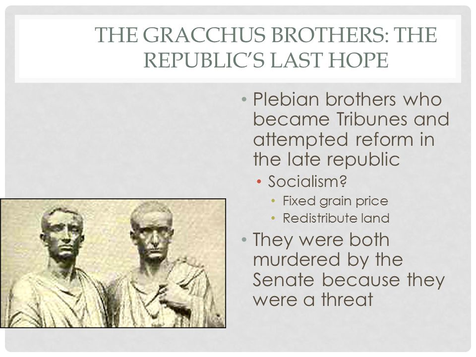 THE GRACCHUS BROTHERS: THE REPUBLIC'S LAST HOPE Plebian brothers who became Tribunes and attempted reform in the late republic Socialism.