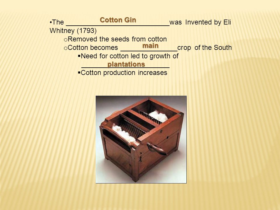 The ___________________________was Invented by Eli Whitney (1793) o Removed the seeds from cotton o Cotton becomes _______________crop of the South  Need for cotton led to growth of _______________________  Cotton production increases Cotton Gin main plantations