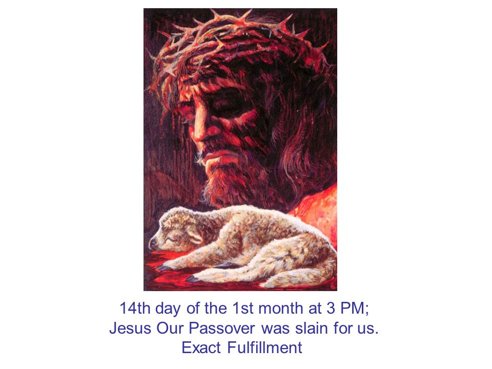 14th day of the 1st month at 3 PM; Jesus Our Passover was slain for us. Exact Fulfillment