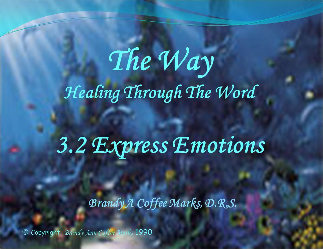 Holy emotions Holy emotions are Gods emotions: compassion, joy, holy indignation and those with life in the Spirit: praise, worship and adoration.
