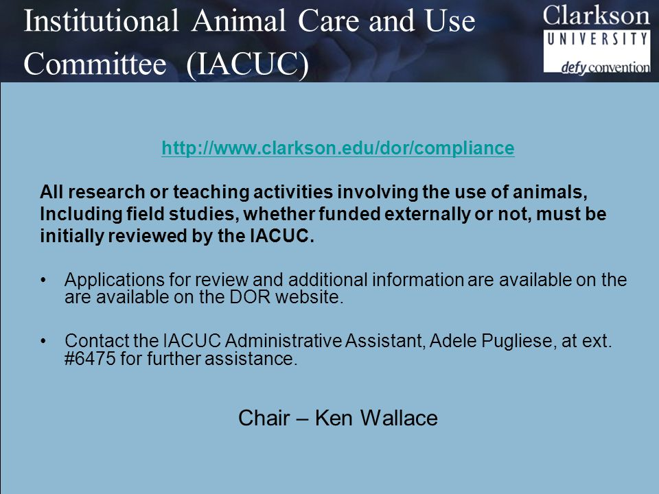Institutional Animal Care and Use Committee (IACUC) http://www.clarkson.edu/dor/compliance All research or teaching activities involving the use of animals, Including field studies, whether funded externally or not, must be initially reviewed by the IACUC.