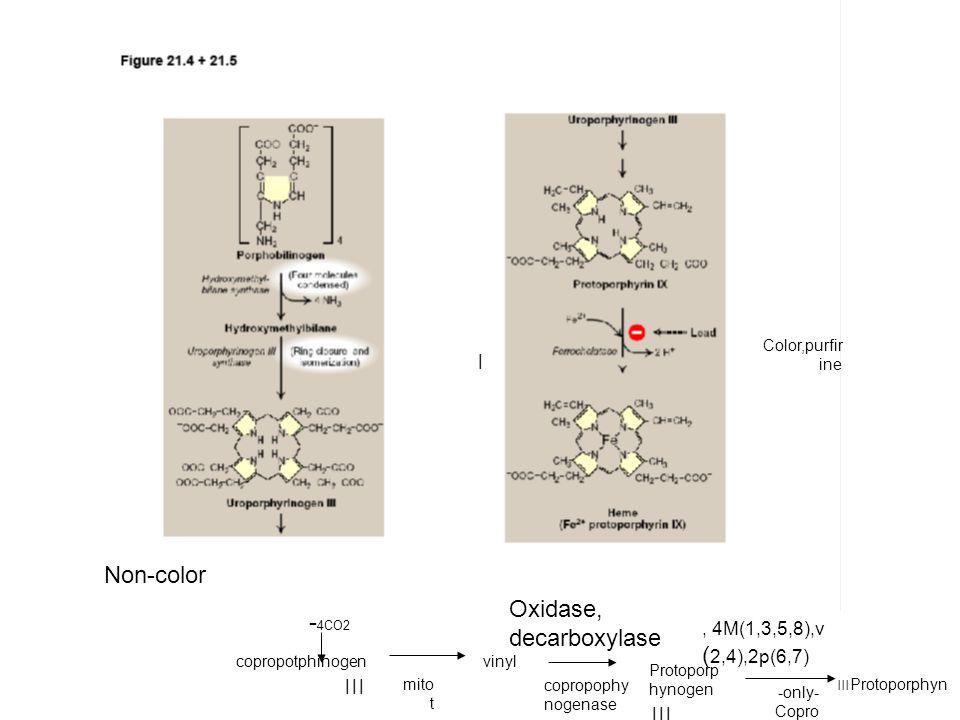- 4CO2 copropotphinogen ׀׀׀ ׀ vinyl copropophy nogenase Protoporp hynogen ׀׀׀ Color,purfir ine, 4M(1,3,5,8),v ( 2,4),2p(6,7) Non-color mito t Protoporphyn ׀׀׀ -only- Copro oxidase Oxidase, decarboxylase
