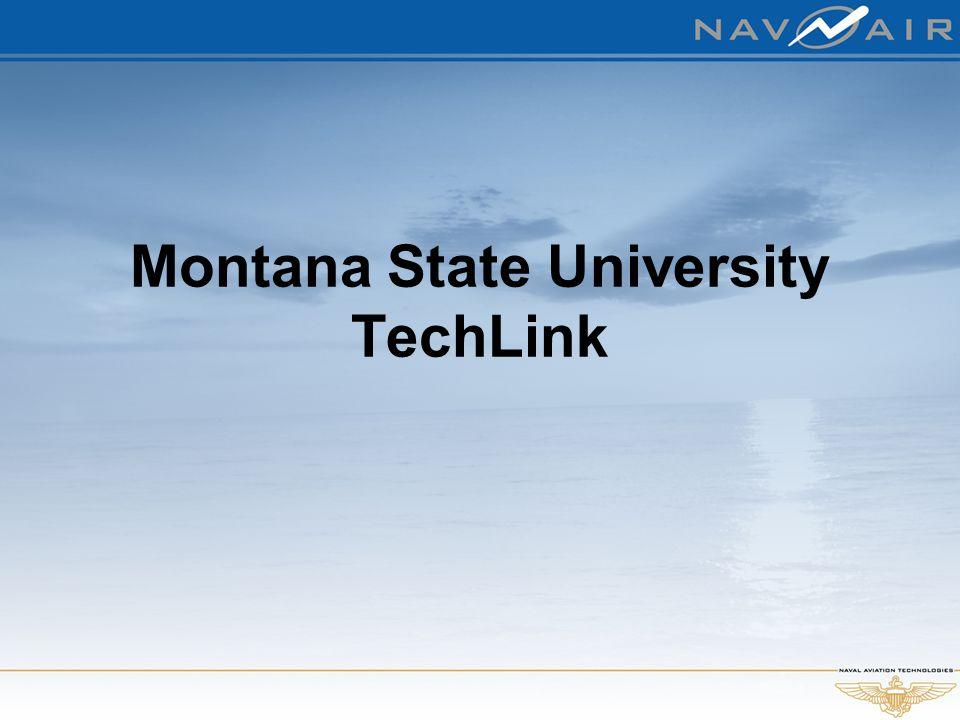 Montana State University TechLink