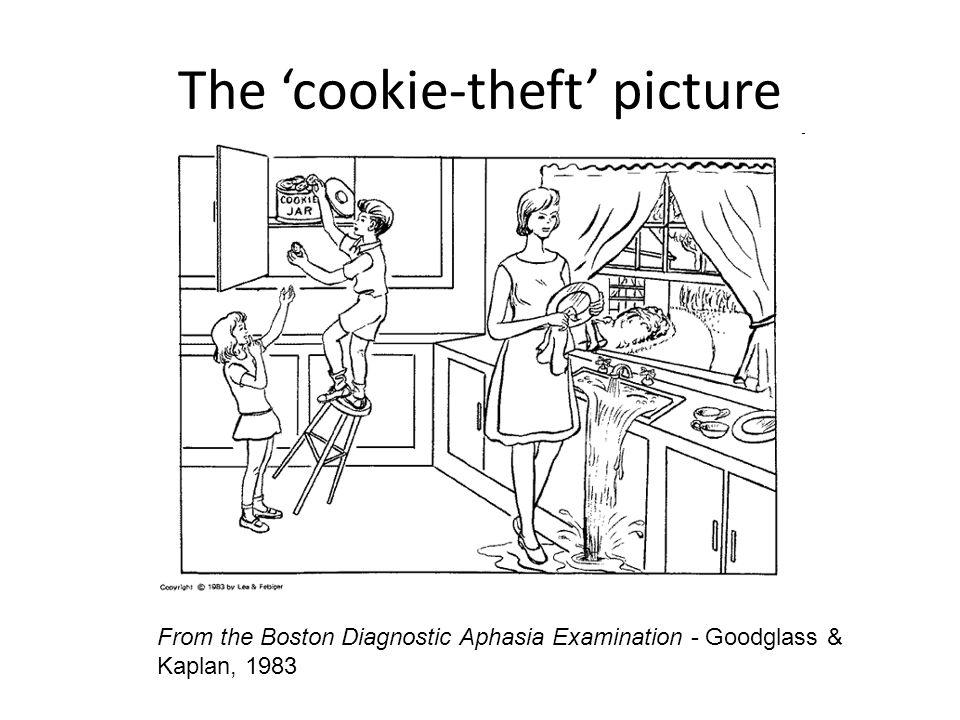 References Harold Goodglass and Edith Kaplan.1983.