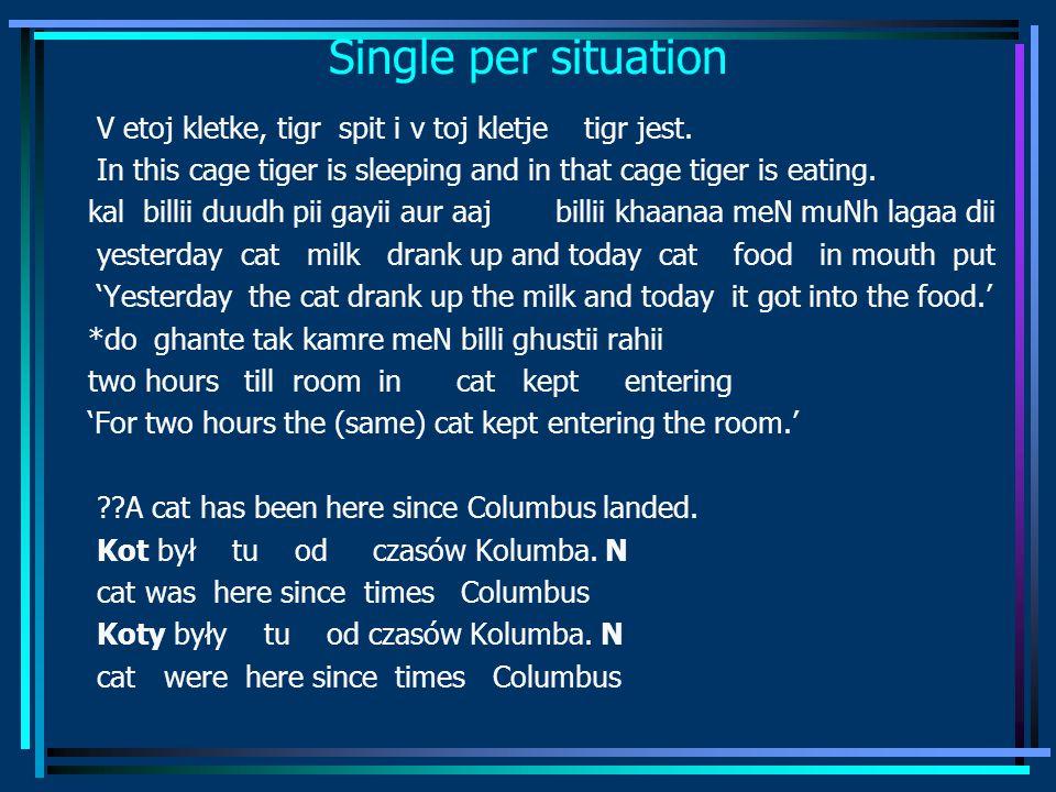Single per situation V etoj kletke, tigr spit i v toj kletje tigr jest.